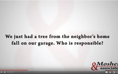 Sound Policy: Tree