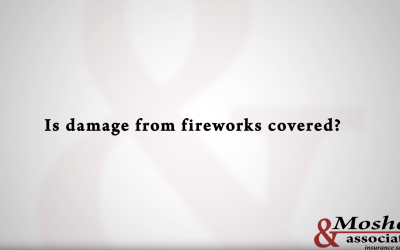 Sound Policy: Fireworks